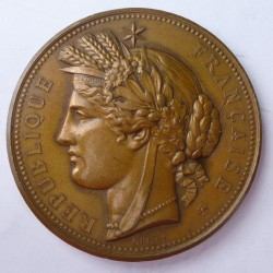 Francia Medalla. 1878. AE. 57,5gr. Rev: Ley.:EXPOSITION UNIVERSELLE/PARIS 1878. (Vistas del Palacio del Trocadero. En Exergo: Ad